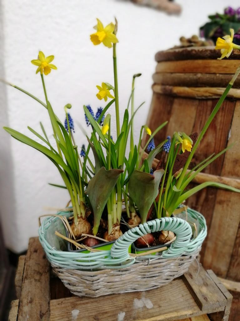 Krepper Lofer Frühling